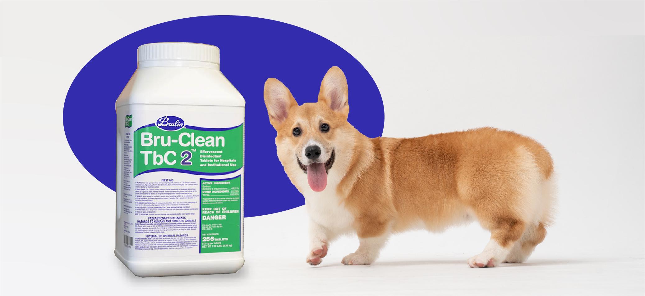 Bru-Clean TbC 2 Effervescent Tablet Disinfectant
